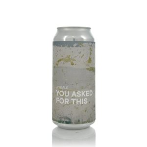 Boundary You Asked For This Pale Ale 4,5% Vol. 24 x 44 cl Nordirland ( so lange Vorrat )