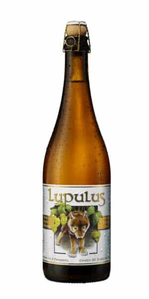 Lupulus Blonde 8.5% Vol. 12 x 75 cl Belgien