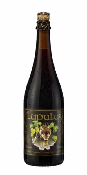 Lupulus Brune 8.5% Vol. 12 x 75 cl Belgien