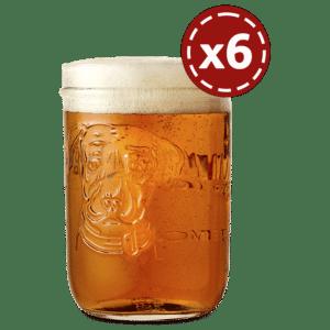 Lagunitas Biergläser 6 Stück mit je 25 cl